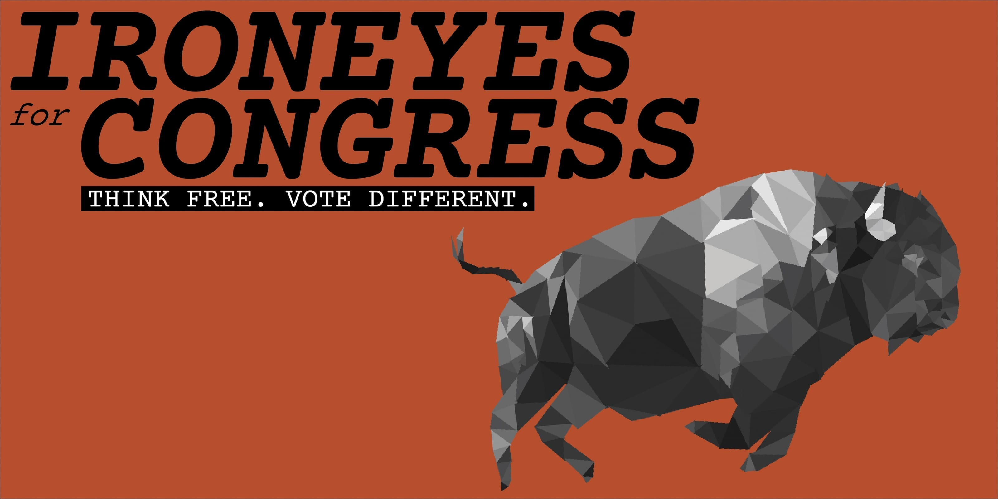Chase Ironeyes for Congress Campaign Sign